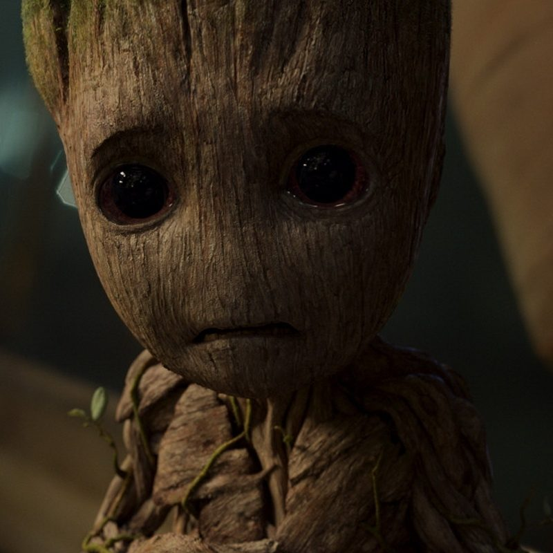 10 Most Popular I Am Groot Wallpaper FULL HD 1920×1080 For PC Background 2018 free download guardians of the galaxy vol 2 mobile wallpapers 138 2nd batch 800x800