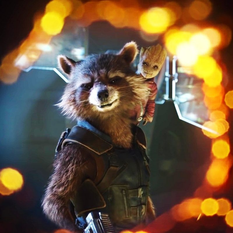 10 Most Popular Rocket And Groot Wallpaper FULL HD 1920×1080 For PC Desktop 2020 free download guardians of the galaxy vol 2 rocket raccoon and groot wallpaper 800x800
