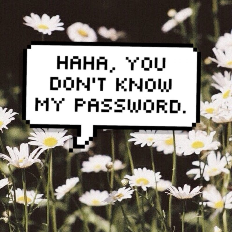10 Top Haha U Don't Know My Password FULL HD 1080p For PC Background 2018 free download haha you dont know my password on we heart it 800x800
