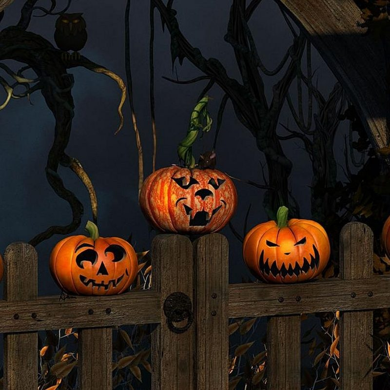 10 Best Halloween Hd Wallpapers 1920X1080 FULL HD 1080p For PC Desktop 2020 free download halloween full hd fond decran and arriere plan 1920x1080 id173865 800x800