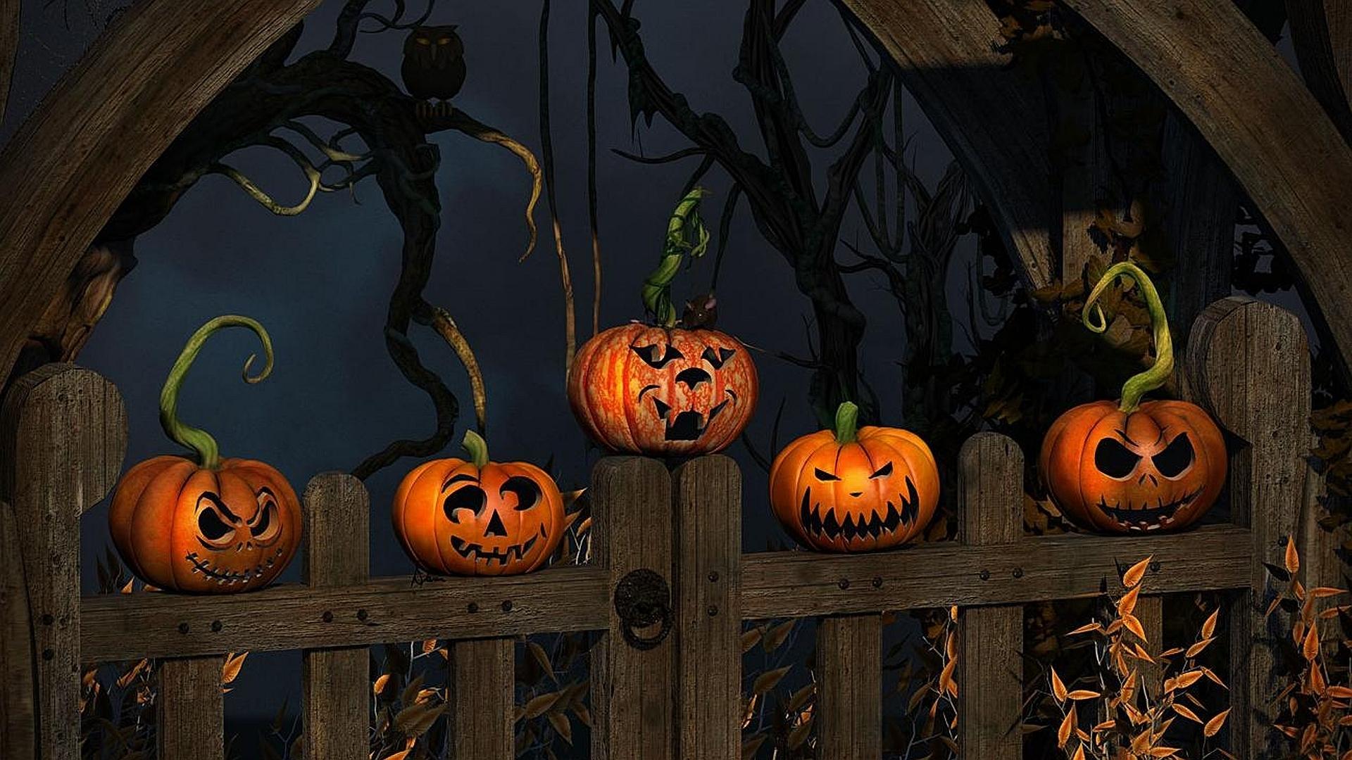 halloween full hd fond d'écran and arrière-plan   1920x1080   id:173865