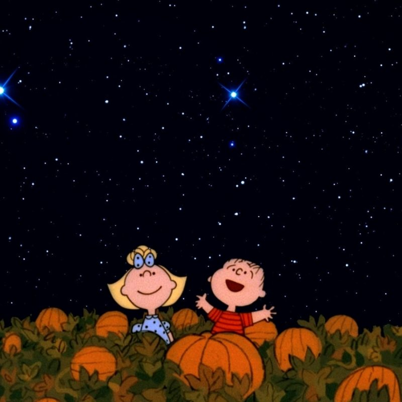 10 Latest Great Pumpkin Charlie Brown Wallpaper FULL HD 1920×1080 For PC Desktop 2018 free download halloween its the great pumpkin charlie brown wallpapers 800x800