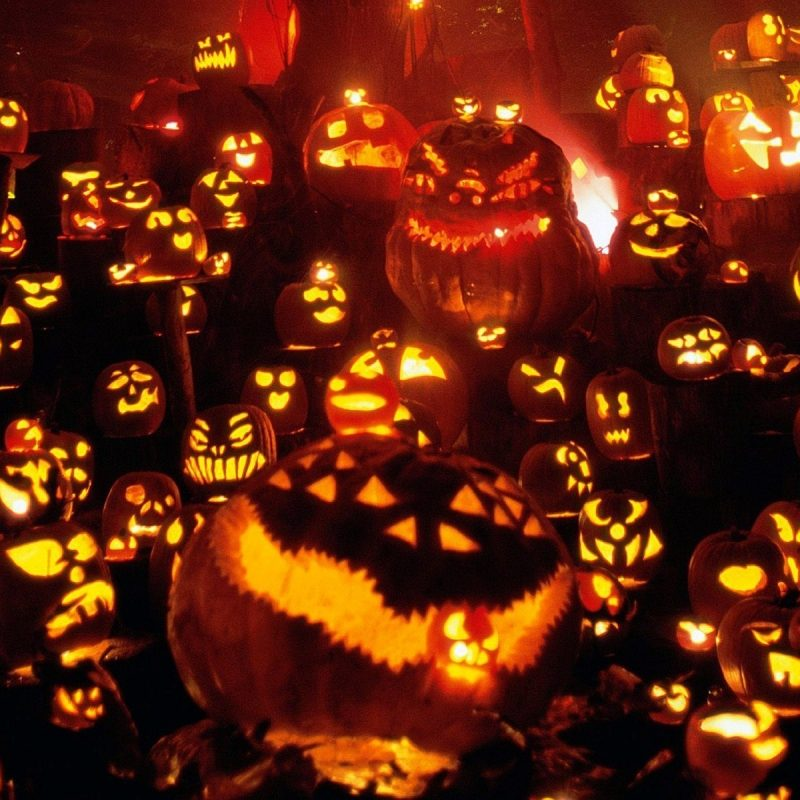 10 New Halloween Pumpkin Wallpaper Hd FULL HD 1920×1080 For PC Background 2018 free download halloween pumpkins festival hd wallpaper hd wallpapers 800x800