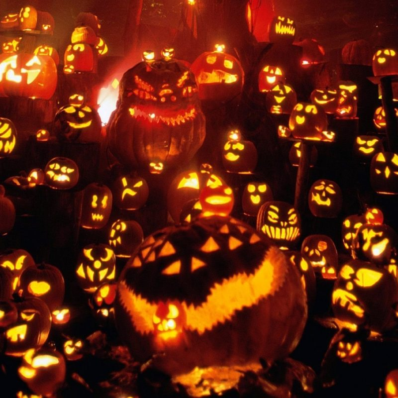 Halloween Pumpkin Wallpaper Hd.10 New Halloween Pumpkin Wallpaper Hd Full Hd 1920 1080 For