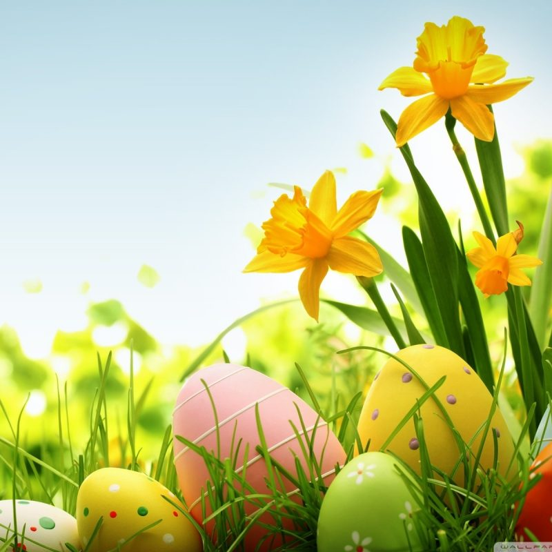 10 Latest Free Easter Computer Wallpaper FULL HD 1080p For PC Background 2020 free download happy easter 2014 e29da4 4k hd desktop wallpaper for 4k ultra hd tv 800x800