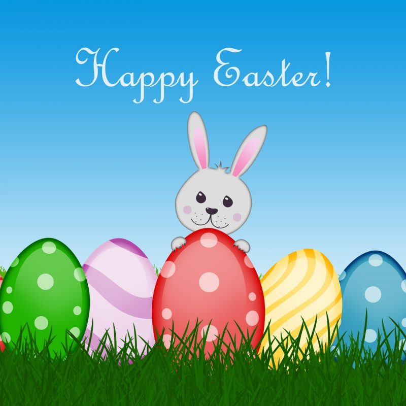 10 Most Popular Easter Bunny Wallpaper Backgrounds FULL HD 1920×1080 For PC Background 2018 free download happy easter backgroundjpg media file pixelstalk 800x800
