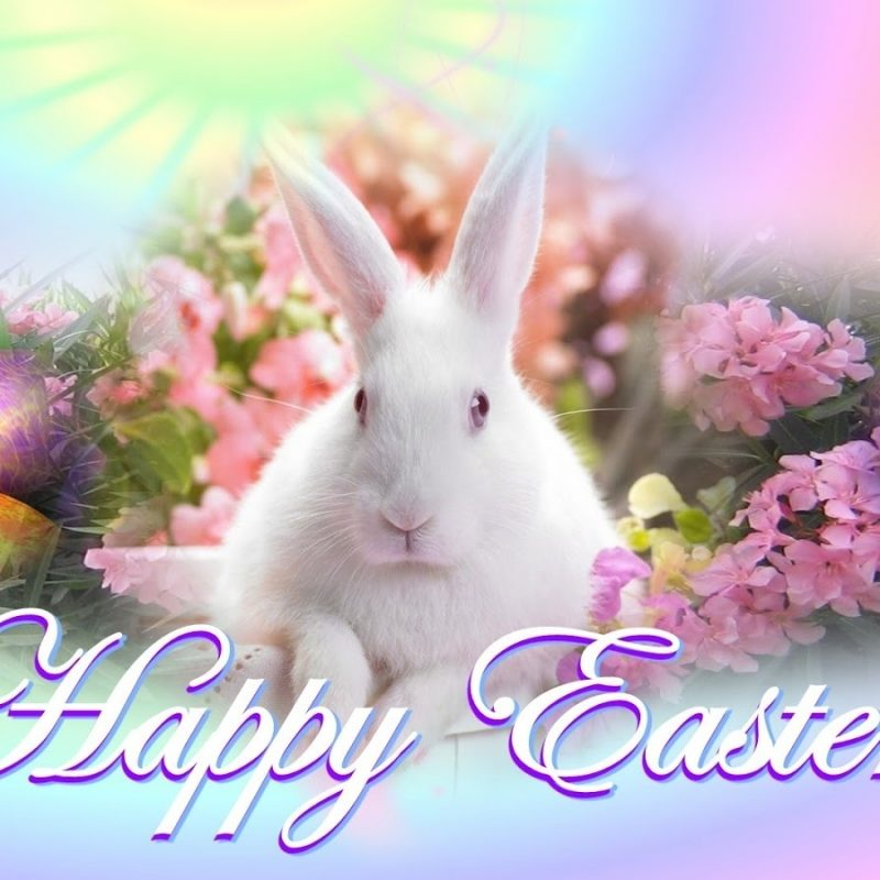 10 Top Free Happy Easter Wallpaper FULL HD 1080p For PC Background 2018 free download happy easter day download 2018 wishes images hd wallpapers 365 800x800