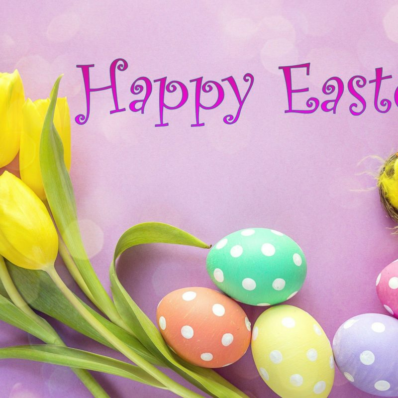 10 Top Happy Easter Images Hd FULL HD 1080p For PC Background 2020 free download happy easter hd images download 800x800