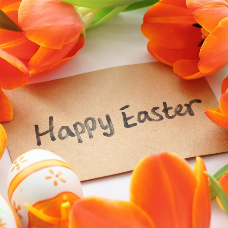 10 Top Happy Easter Images Hd FULL HD 1080p For PC Background 2020 free download happy easter hd photo background hd wallpapers 800x800
