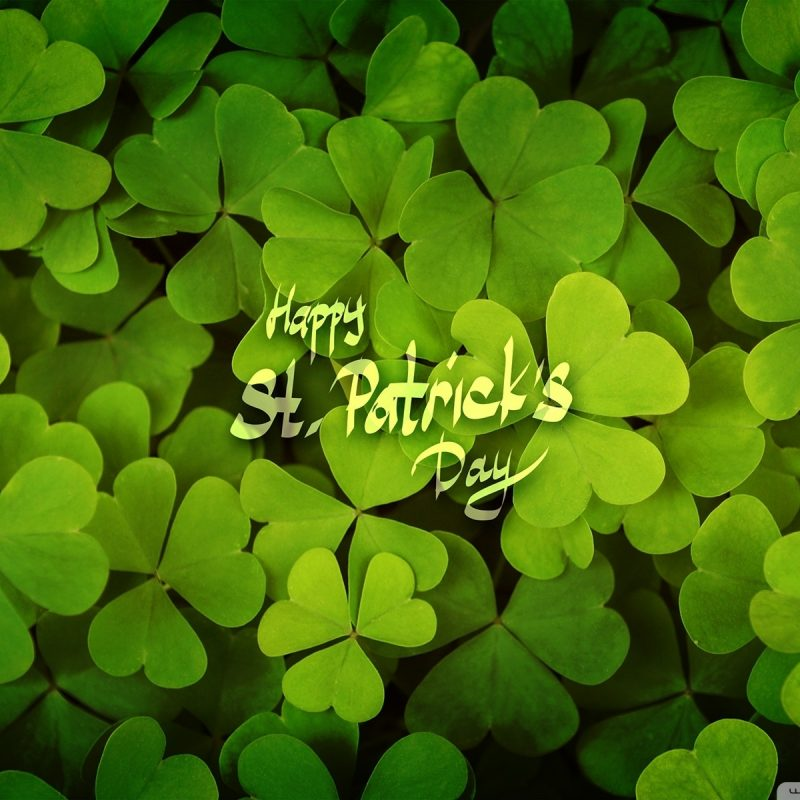 10 Top St Patricks Day Desktop FULL HD 1080p For PC Background 2021 free download happy st patricks day e29da4 4k hd desktop wallpaper for 4k ultra hd tv 800x800