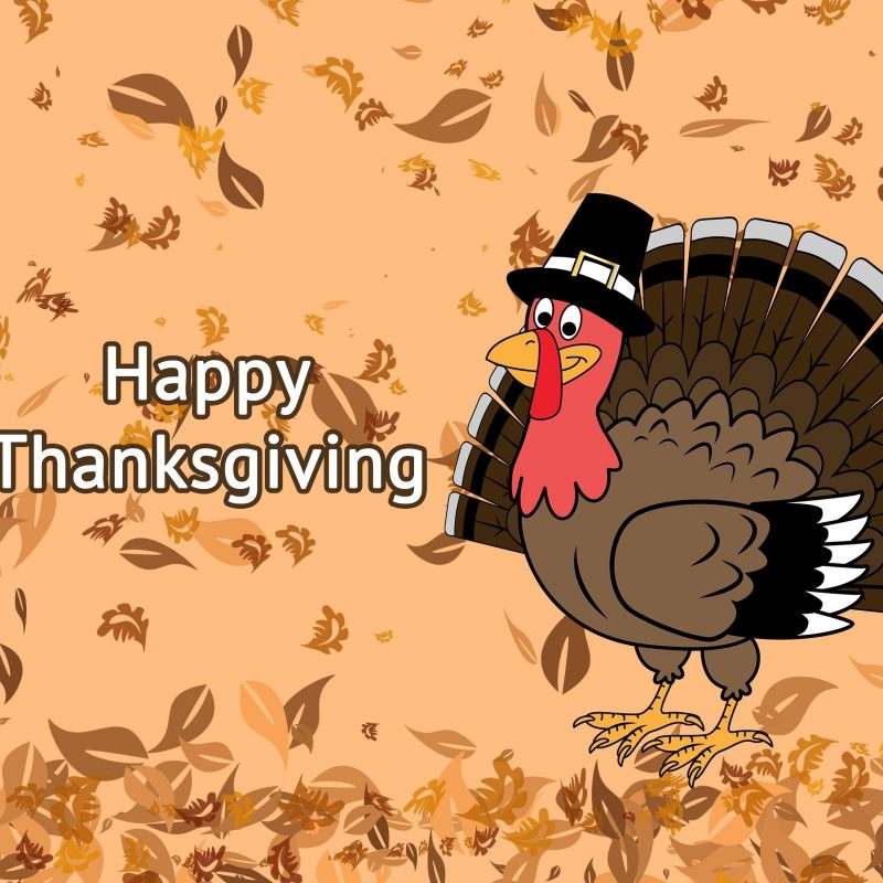 10 New Turkeys For Thanksgiving Wallpaper FULL HD 1080p For PC Desktop 2018 free download happy thanksgiving day falling leaves on turkey background hd wallpaper 800x800