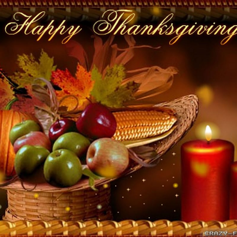 10 Latest Free Happy Thanksgiving Wallpaper FULL HD 1080p For PC Background 2021 free download happy thanksgiving day wallpapers crazy frankenstein 800x800