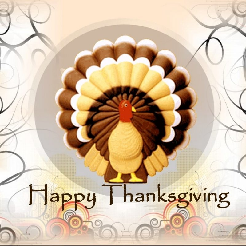 10 Top Happy Thanksgiving Turkey Wallpaper FULL HD 1920×1080 For PC Desktop 2018 free download happy thanksgiving happy thanksgiving clip art wallpaper hd 800x800