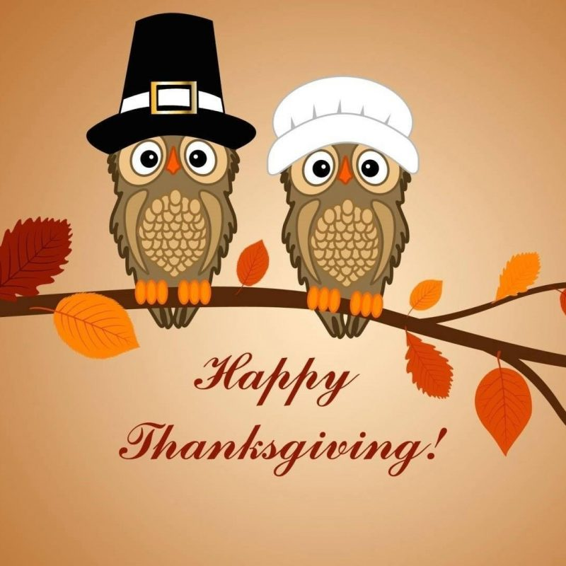 10 New Happy Thanksgiving Hd Wallpapers FULL HD 1080p For PC Background 2018 free download happy thanksgiving owls wallpaper wallpaper studio 10 tens of 800x800