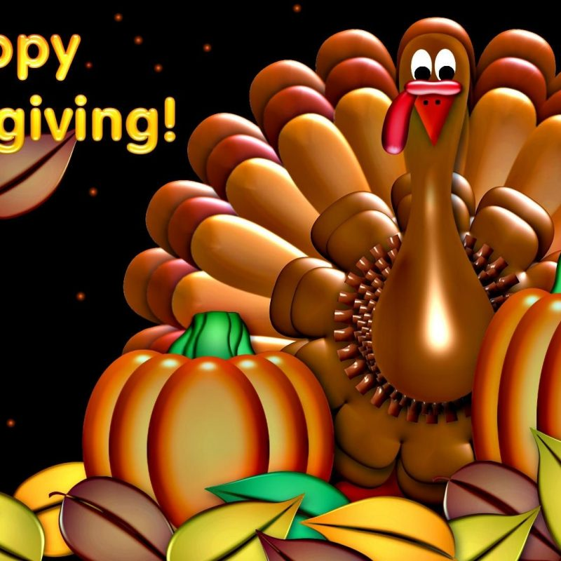 10 Top Happy Thanksgiving Turkey Wallpaper FULL HD 1920×1080 For PC Desktop 2018 free download happy thanksgiving turkey pumpkin artistic holiday hd widescreen 800x800