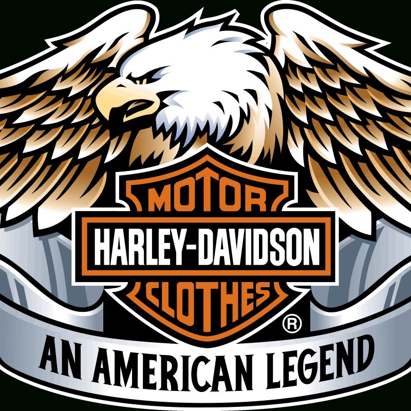10 Best Harley Davidson Eagle Wallpaper FULL HD 1920×1080 For PC Desktop 2018 free download harley davidson 4k ultra hd fond decran and arriere plan 800x800