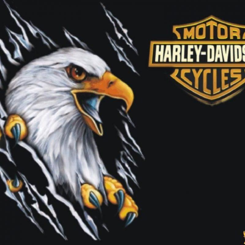 10 Best Harley Davidson Eagle Wallpaper FULL HD 1920×1080 For PC Desktop 2018 free download harley davidson eagle wallpaper 7036 hd wallpapers in bikes 800x800