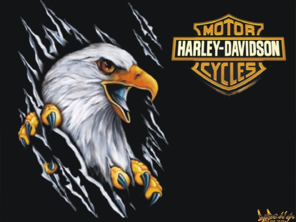 harley davidson eagle wallpaper 7036 hd wallpapers in bikes