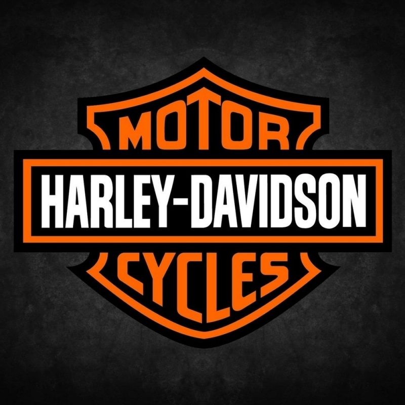 10 Best Harley Davidson Hd Logo FULL HD 1920×1080 For PC Background 2020 free download harley davidson logo harley davidson inc h d or harley is 800x800