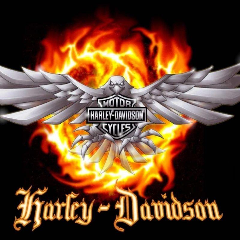 10 Best Harley Davidson Eagle Wallpaper FULL HD 1920×1080 For PC Desktop 2018 free download harley davidson logo wallpaper harley davidson logo harleys 800x800