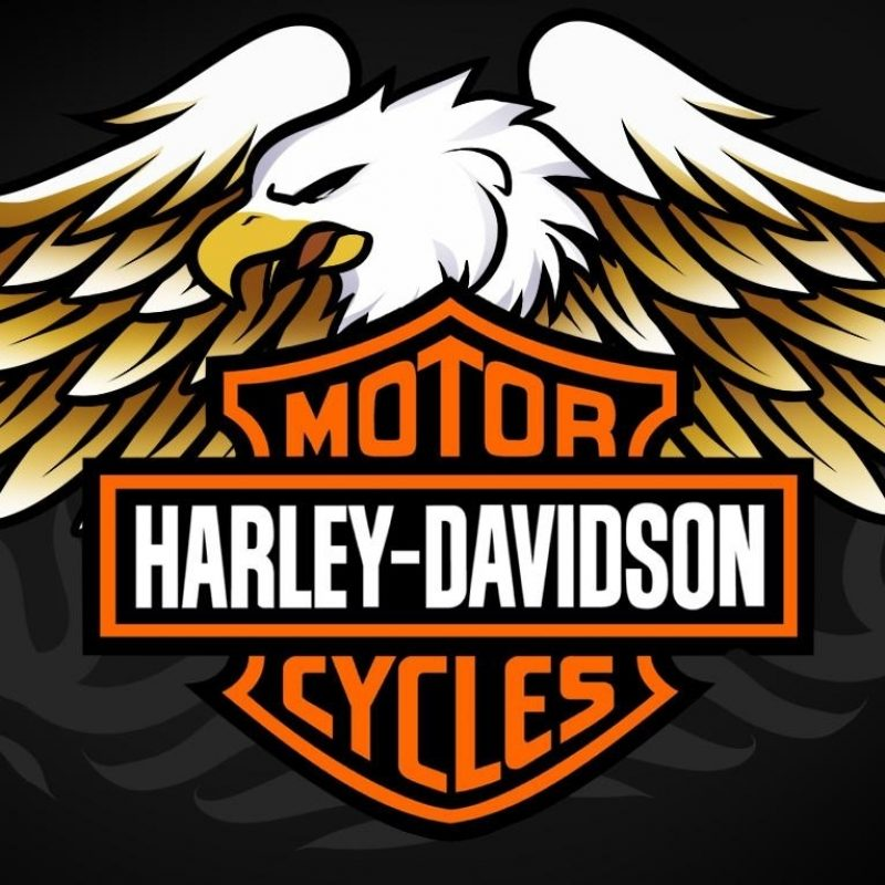 10 Best Harley Davidson Eagle Wallpaper FULL HD 1920×1080 For PC Desktop 2018 free download harley davidson logo wallpapers wallpaper cave 3 800x800