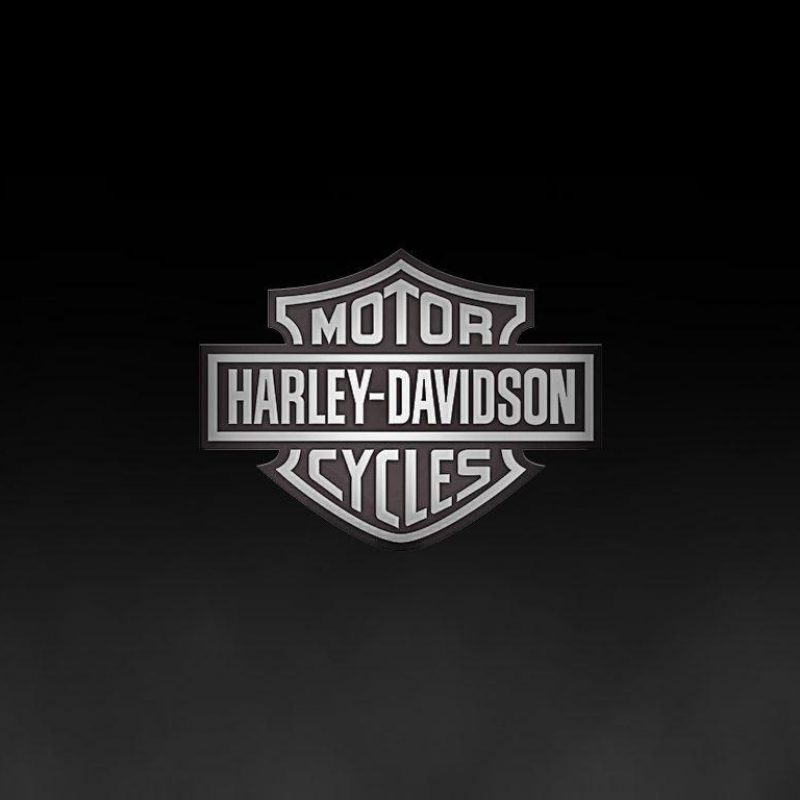 10 Best Harley Davidson Hd Logo FULL HD 1920×1080 For PC Background 2020 free download harley davidson logo wallpapers wallpaper cave 6 800x800