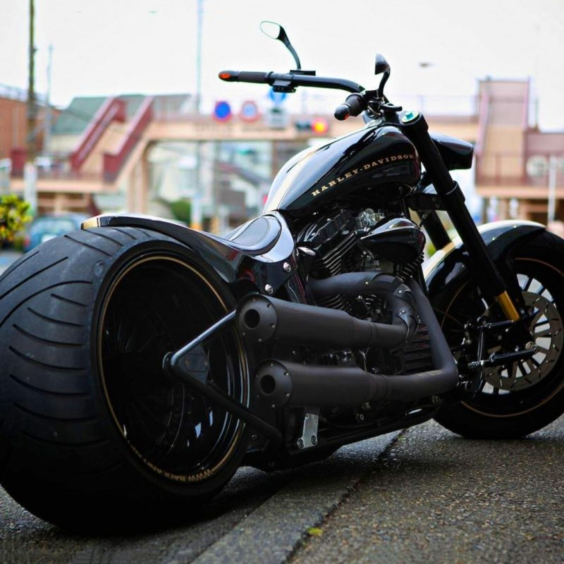 10 Latest Harley Davidson Wallpaper 1920X1080 FULL HD 1920×1080 For PC Background 2020 free download harley davidson wallpaper 16883 1680x1050 px hdwallsource 800x800