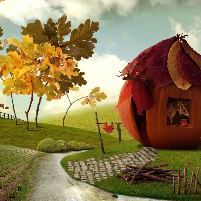 10 Top Thanksgiving Backgrounds For Desktop FULL HD 1080p For PC Background 2021 free download hd 3d thanksgiving backgrounds wallpaper wiki 1 800x800