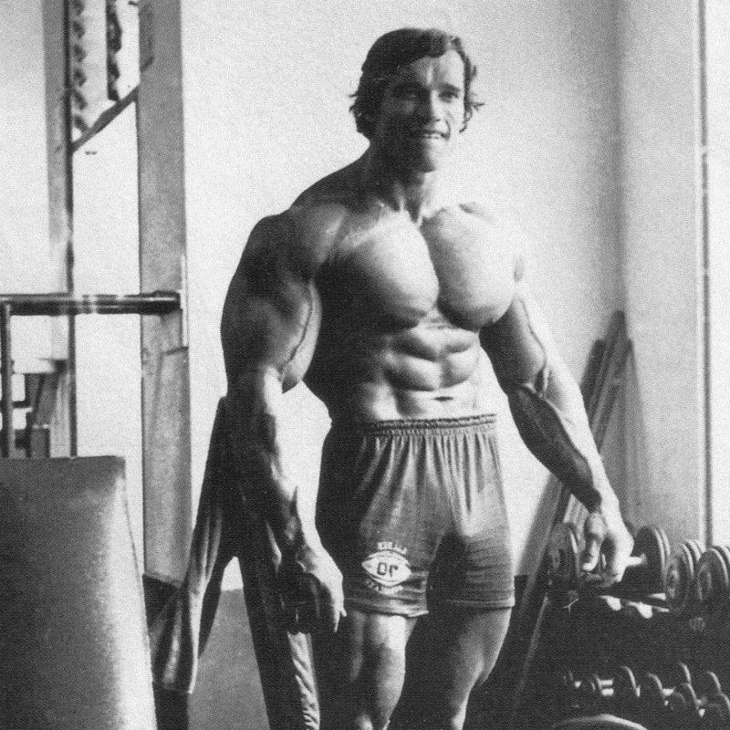 10 New Arnold Schwarzenegger Wallpaper 1920X1080 FULL HD 1920×1080 For PC Background 2018 free download hd arnold schwarzenegger wallpaper media file pixelstalk 800x800