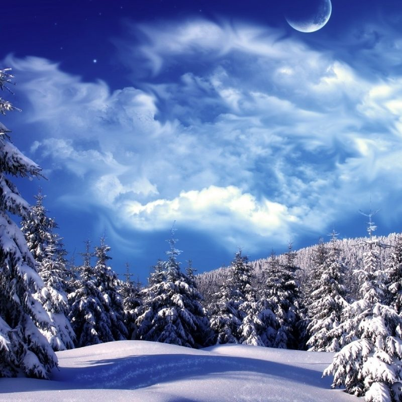 10 Latest Winter Wonderland Background Pictures FULL HD 1080p For PC Background 2018 free download hd awesome winter wonderland background image hd new wallpaper hd 800x800