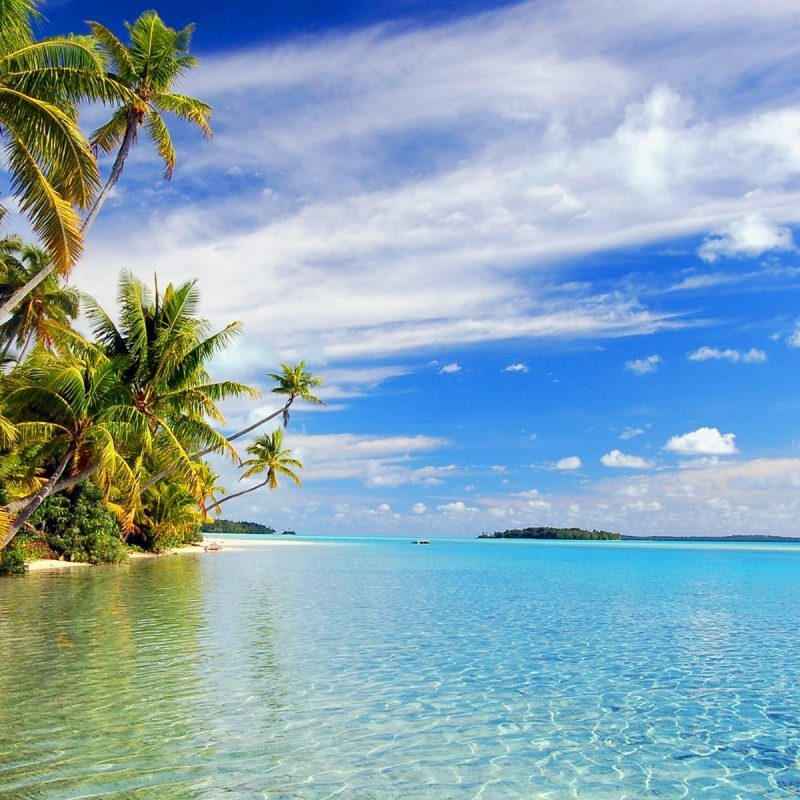 10 Latest Tropical Beach Wallpaper Hd FULL HD 1920×1080 For PC Desktop 2020 free download hd download tropical beach wallpapers 800x800