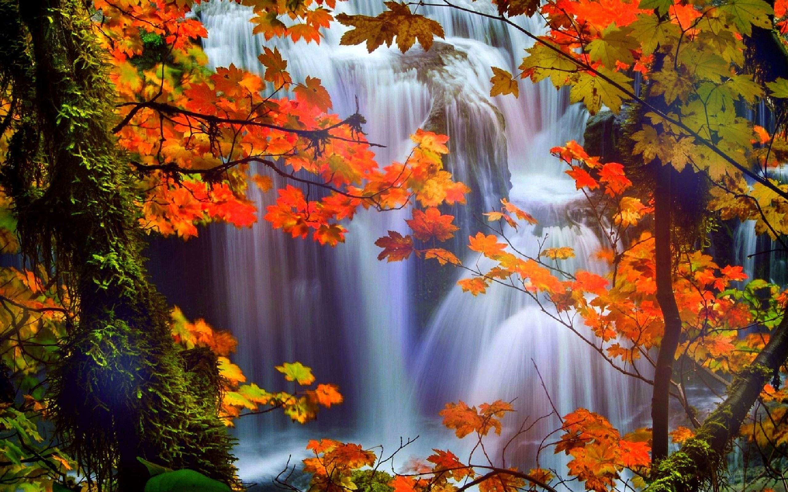 hd-fall-scenery-picture - wallpaper.wiki