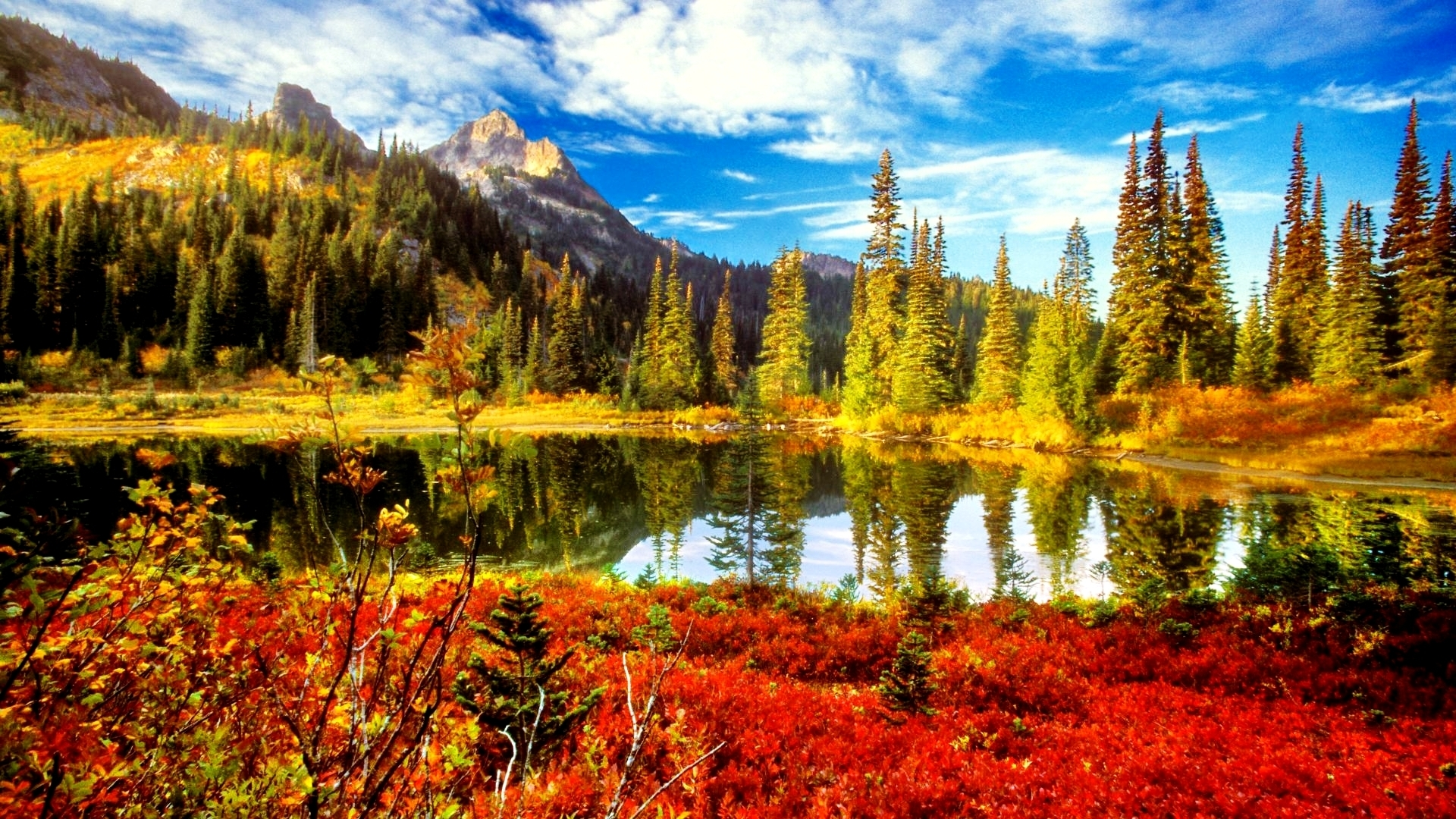 hd fall scenery wallpapers | pixelstalk