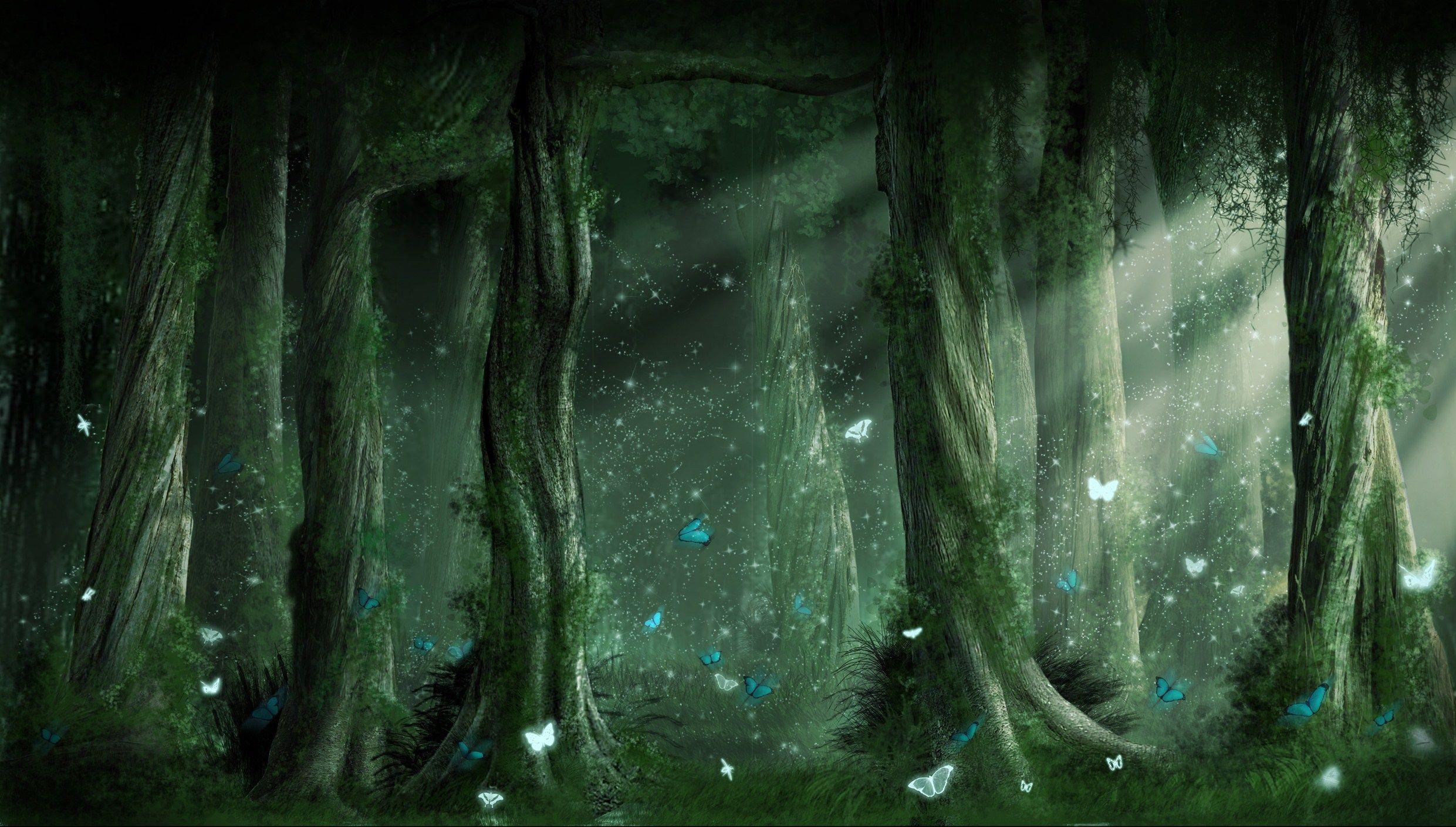 hd fantasy forest wallpaper 24650 hd wallpapers   random stuff in