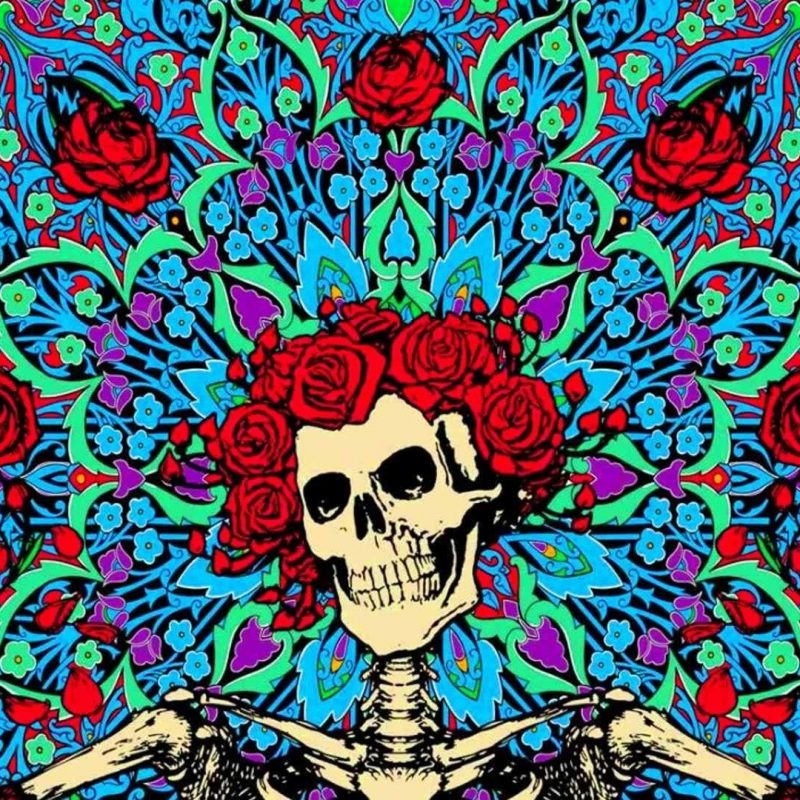 10 Top Grateful Dead Wallpaper Hd FULL HD 1080p For PC Background 2020 free download hd grateful dead wallpaper 65 images 800x800