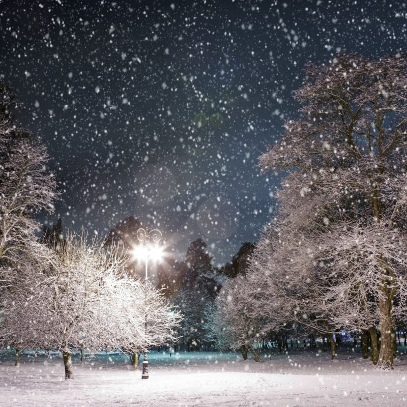 10 Top Beautiful Snow Falling Wallpapers FULL HD 1080p For PC Desktop 2018 free download hd snow falling wallpapers download free 889370 800x800