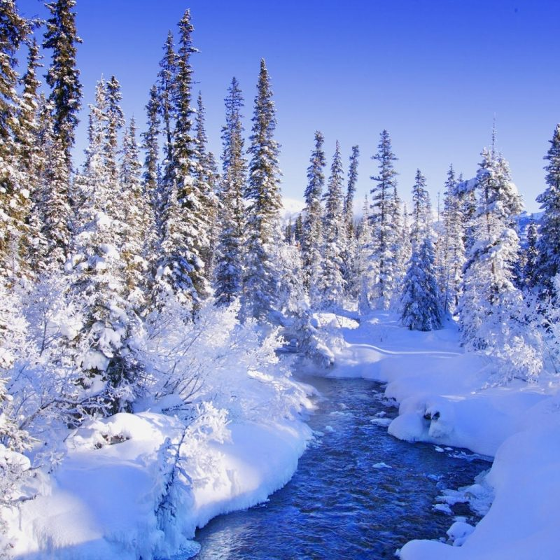 10 Top Winter Scenes Images Wallpaper FULL HD 1920×1080 For PC Desktop 2021 free download hd winter scenes wallpapers download free 639198 800x800