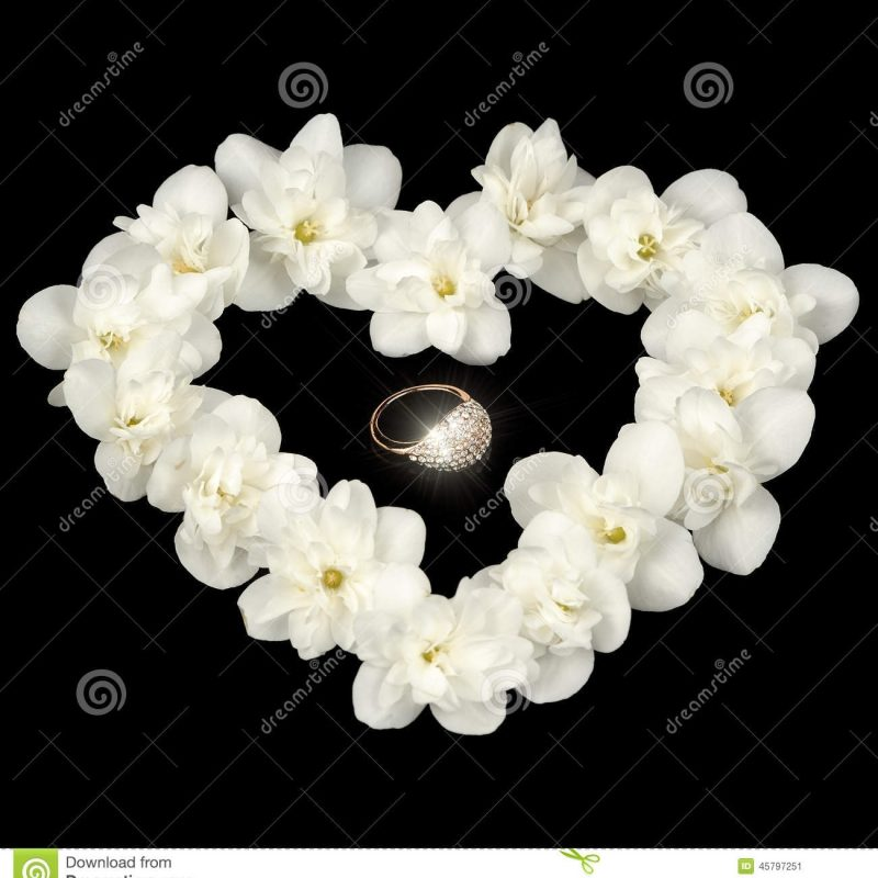 10 Latest Images Of Jasmine Flowers FULL HD 1080p For PC Background 2021 free download heart shape made of white jasmine flowers on black background stock 800x800