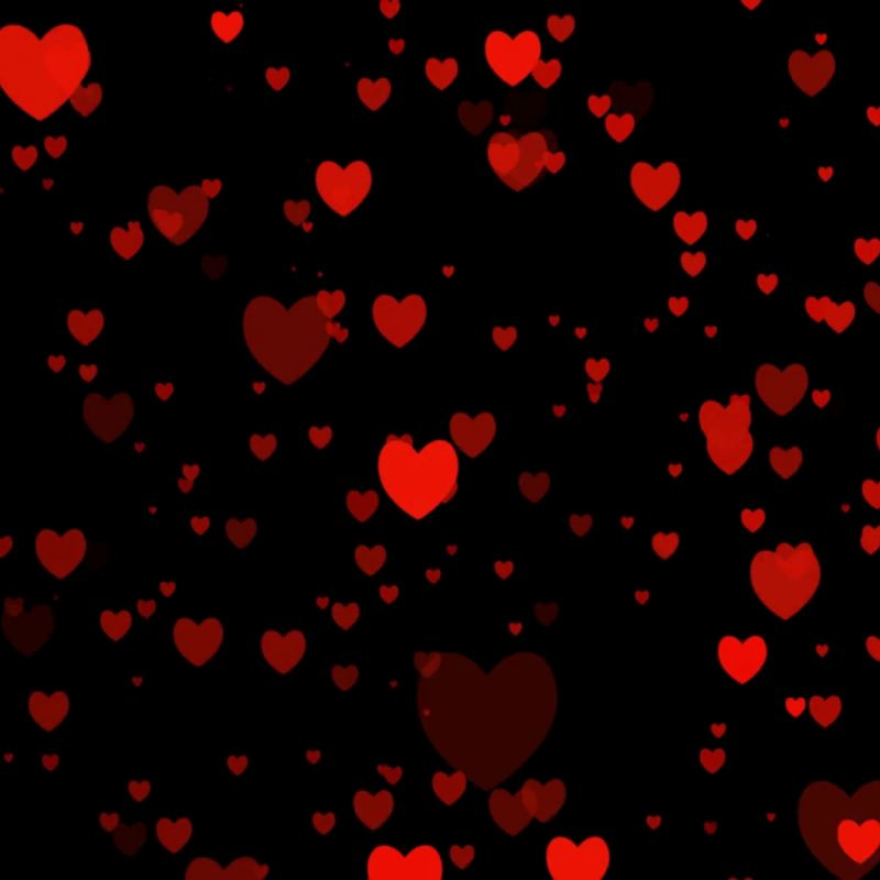 10 Latest Red Heart Black Background FULL HD 1080p For PC Desktop 2020 free download heart video for valentines day for love appears on black background 1 800x800