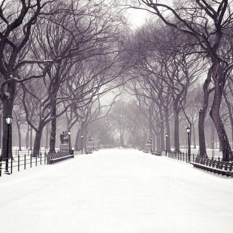10 Best Christmas In New York Wallpaper FULL HD 1920×1080 For PC Background 2020 free download hecallsmestatuary walk central park new york city new york 1 800x800