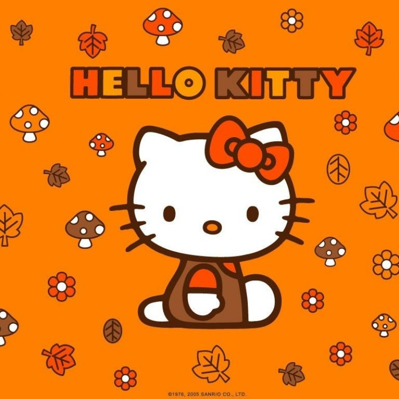 10 New Hello Kitty Thanksgiving Wallpaper FULL HD 1920×1080 For PC Background 2018 free download hello kitty autumn leaves wallpaper cute wallpapers comic and 800x800