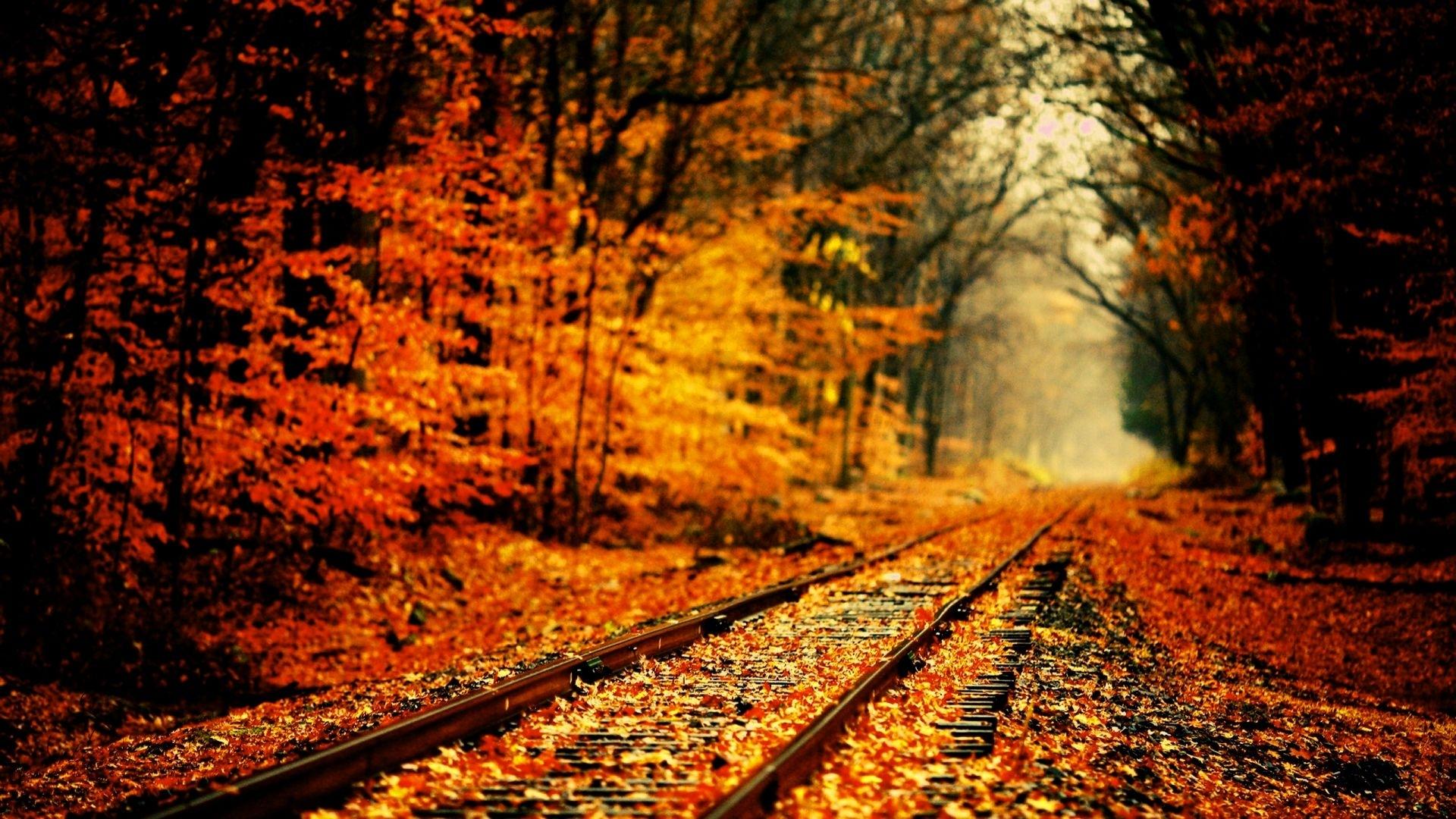 high definition fall wallpapers | season wallpaper | pinterest