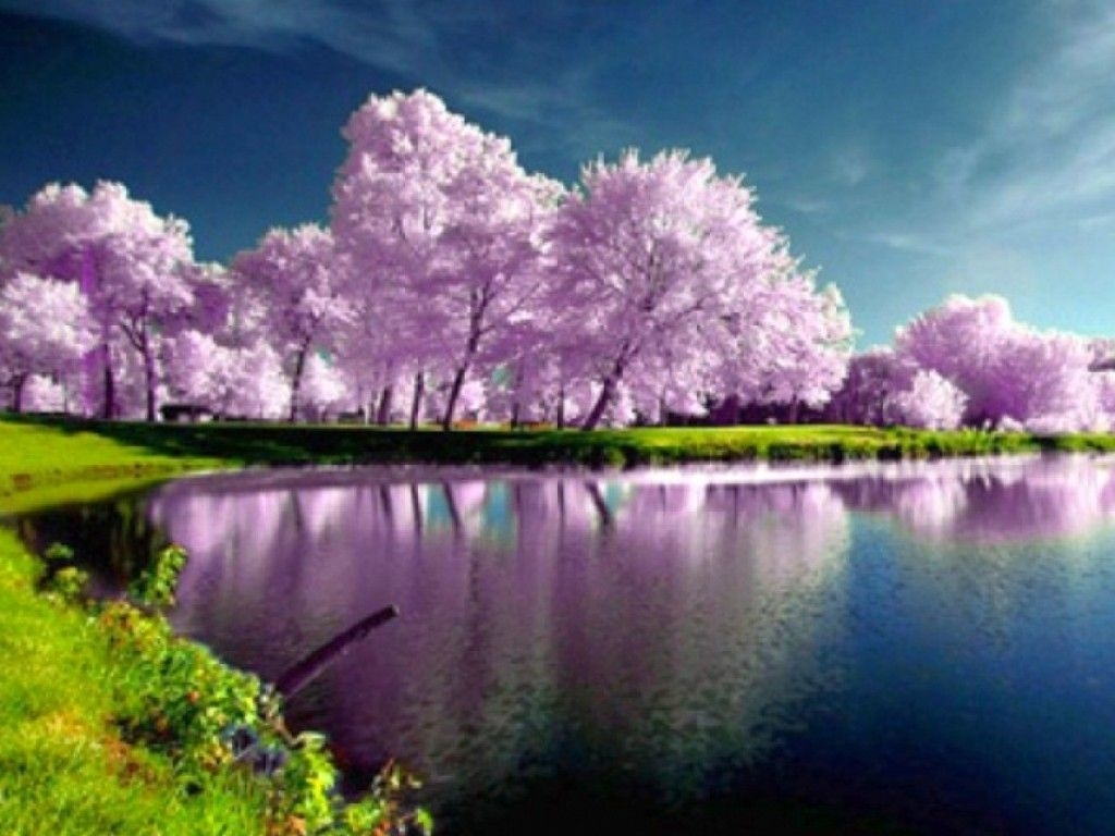 high resolution spring desktop wallpaper | -spring-wallpapers-hd