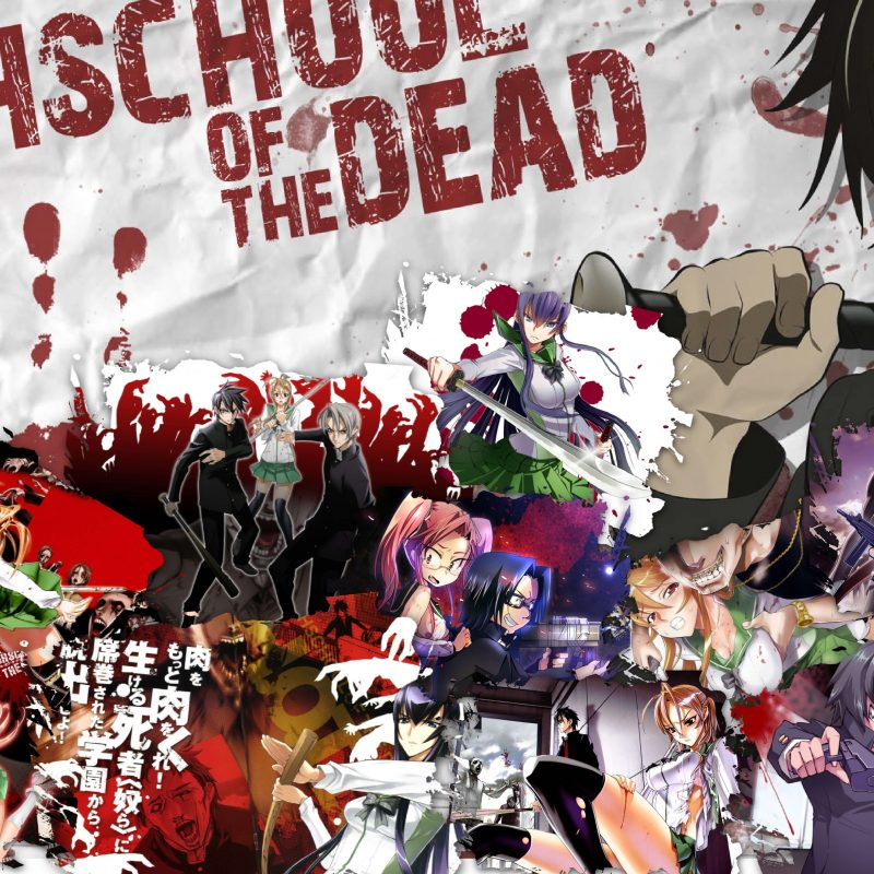 10 New High School Of The Dead Wallpaper FULL HD 1920×1080 For PC Desktop 2018 free download highschool of the dead poster full hd fond decran and arriere plan 800x800