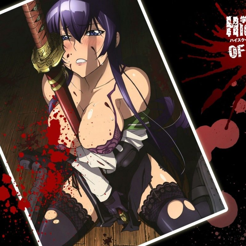 10 New Highschool Of The Dead Wallpaper FULL HD 1080p For PC Background 2018 free download highschool of the dead wallpaper pesquisa google anime 800x800