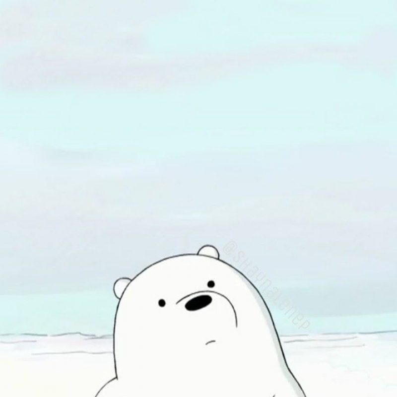 10 Top Ice Bear We Bare Bears Wallpaper FULL HD 1080p For PC Background 2018 free download homescreen lockscreen wallpaper phone we bare bears cartoon ice 800x800