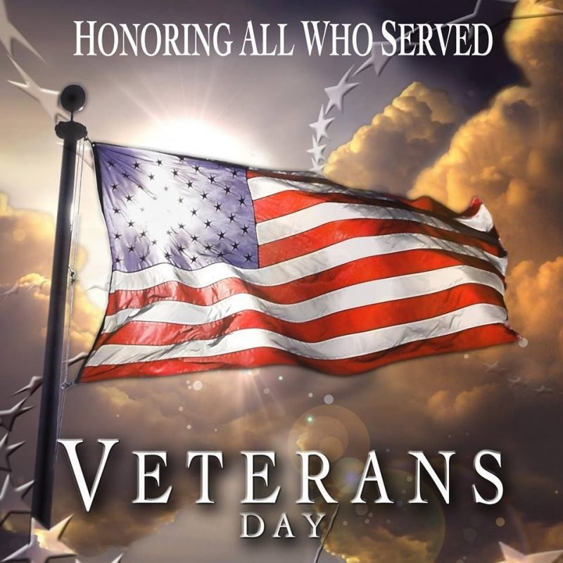 10 Latest Veterans Day 2015 Wallpaper FULL HD 1080p For PC Background 2021 free download honoring all who served veterans day red white blue 800x800