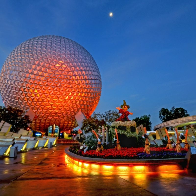 10 Top Walt Disney World Desktop Wallpaper FULL HD 1080p For PC Background 2020 free download how to get a free five day vacation at walt disney world 800x800