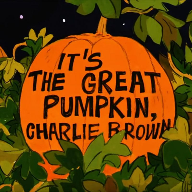 10 New Great Pumpkin Charlie Brown Pictures FULL HD 1920×1080 For PC Background 2020 free download how to watch charlie brown halloween 2017 its the great pumpkin 800x800