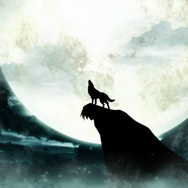 10 Best Wolf Howling At The Moon Wallpaper FULL HD 1080p For PC Background 2020 free download howling wolf moon wallpaper wolves pinterest wolf moon wolf 2 800x800